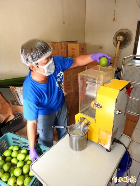 李洽滄也將外皮有暇疵賣相不佳的無籽檸檬製成原汁或果醋、酵素。(記者佟振國攝)