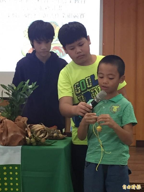 成功鎮小朋友說明瓊崖海棠種子做的音笛哨。(記者張存薇攝)