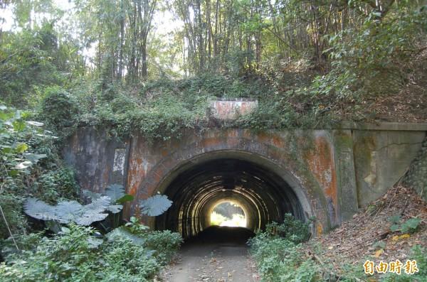 六龜隧道極具生態旅遊潛力。(記者蘇福男攝)