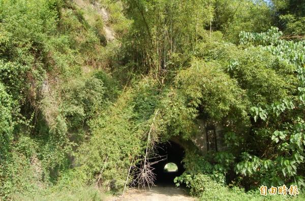 六龜隧道明年6月將開放4條生態解說路線。(記者蘇福男攝)
