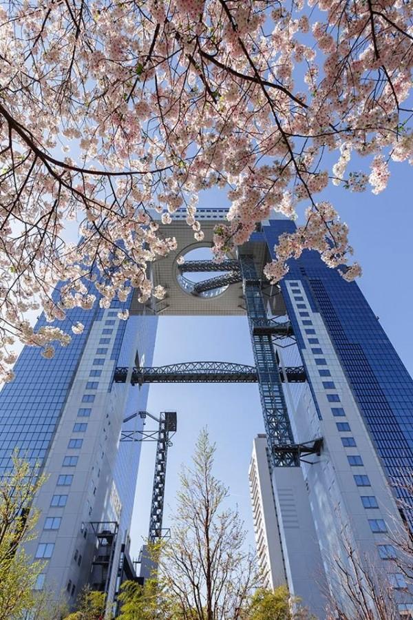 圖為大阪的梅田藍天大樓、空中庭園展望台。(圖擷自空中庭園展望台臉書)