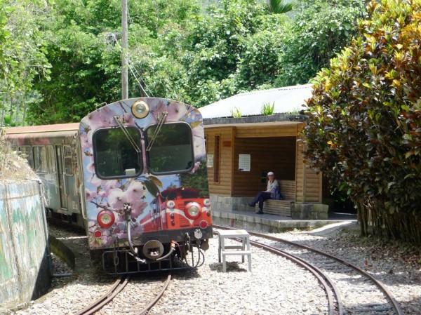 阿里山森林鐵路管理處將於今年12月份推出『森愛咖啡香』郵輪式列車,帶民眾搭森鐵到嘉義梅山喝冠軍咖啡。(台鐵提供)