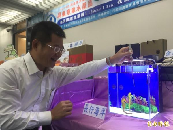 陳梧桐團隊開發的專利海馬飼養缸。(記者羅欣貞攝)