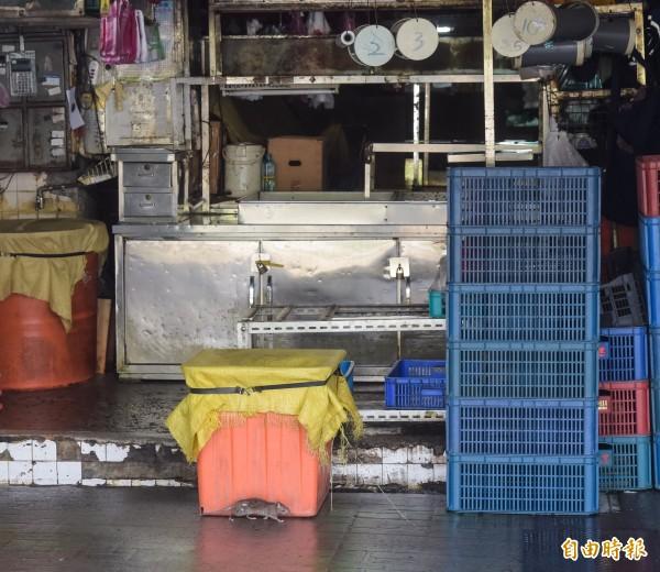 台北市環南市場自67年啟用至今已逾38年,北市府預計將其改建為現代化的市場,所有工程預計將在111年3月完工,本來「鼠輩」橫行的環境,將煥然一新。(記者黃耀徵攝)