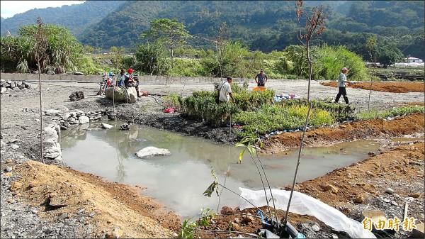 仁愛鄉南豐部落居民於眉溪畔重新建構濕地生態,打造生態池。 (記者佟振國攝)
