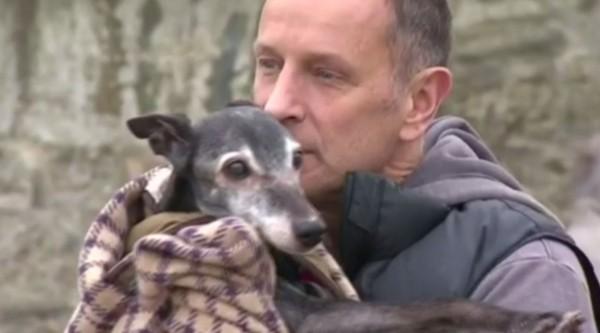 伍茲(Mark Woods)的18歲愛犬核桃(Walnut),因身體機能低下進行安樂死。(圖擷自《BBC》)