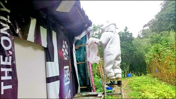 民眾求助的情況很多,包括摘除蜂窩,捕捉入侵家中的蛇類,導致消防隊員除了救火之外,還要負擔動物救援工作,引發討論。(消防局提供)