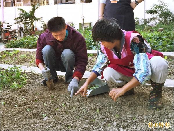 美國高通公司捐助1萬3500元美金給新竹市仁愛社會福利基金會,做為小型作業工坊的修繕整建經費,讓身障學員可工作、種菜,自助助人。(記者洪美秀攝)