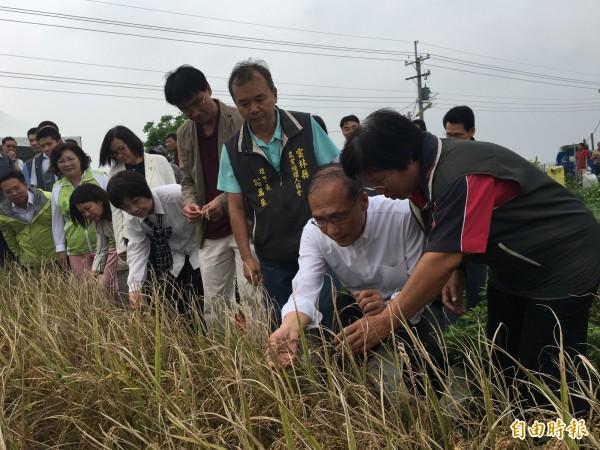 行政院長林全視察雲林大糧倉計畫,他認為,要振興台灣農業,就要引進年輕人、新方法及生產環境。(記者黃淑莉攝)