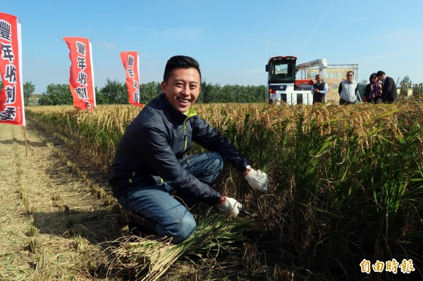 行銷新竹好物「好香米」新竹市長林智堅體驗割稻, 呼籲民眾把握預購機會。(記者蔡彰盛攝)