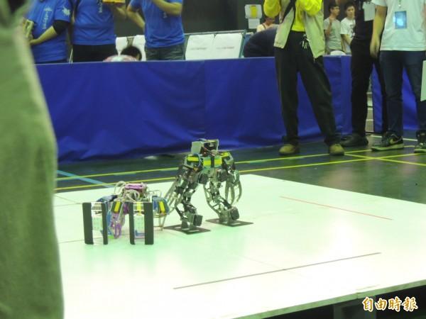 緊張刺激的機器人相撲。(記者廖淑玲攝)