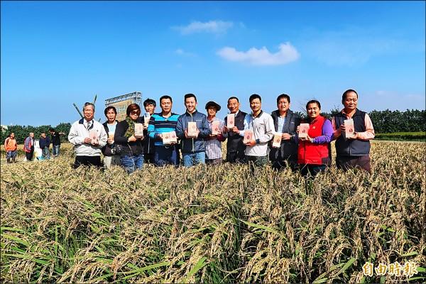 行銷新竹好物「好香米」新竹市長林智堅與地方人士共同體驗割稻、嘗好米。(記者蔡彰盛攝)