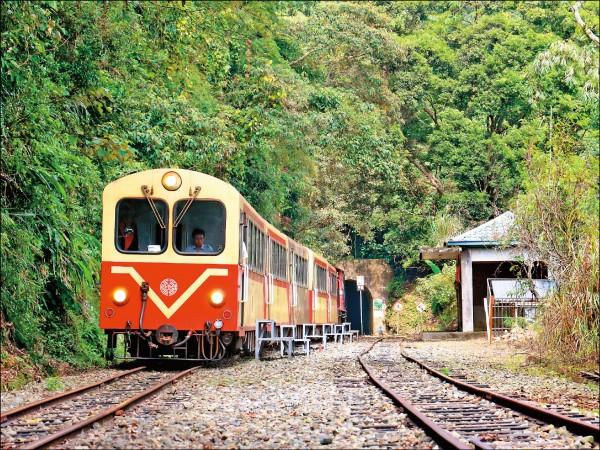 台鐵明年1、2月再推阿里山郵輪式列車行程(圖:台鐵局提供)