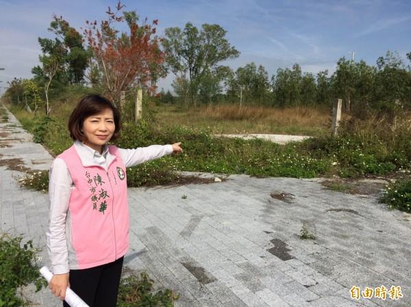 中國醫大以六十六億買得十六公頃文教用地,市議員陳淑華質疑前市府賤賣。(記者黃鐘山攝)