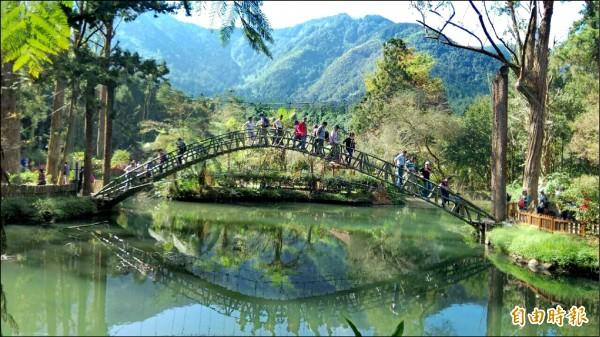 自由行觀光客喜愛鄉村和高山景致,特別偏愛清境農場、日月潭、溪頭。圖為溪頭大學池。(資料照,記者劉濱銓攝)