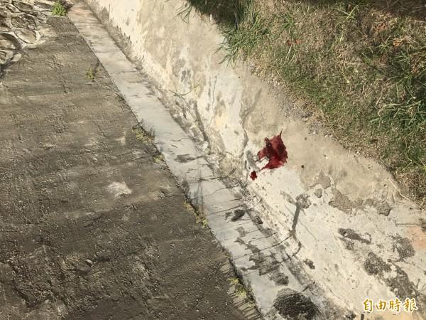 婦人墜落西門內牆,現場可見血跡斑斑。(記者蔡宗憲攝)