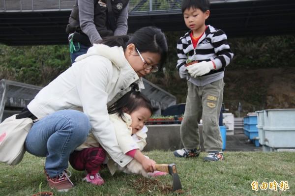 基隆潮境公園今日有一場台灣百合復育活動,為了來春可以看見百合盛開的美景,有親子一同種下台灣百合。(記者林欣漢攝)