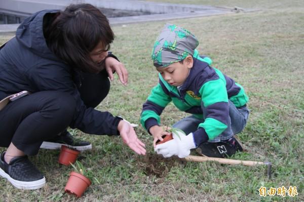 對許多孩子來說,這可能是他人生第一次親下植下一株植物,手法不熟練沒關係,家長在一旁協助,親子關係更甜蜜。(記者林欣漢攝)