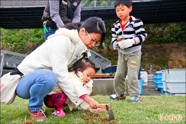親子一同在基隆潮境公園內種下台灣百合。(記者林欣漢攝)