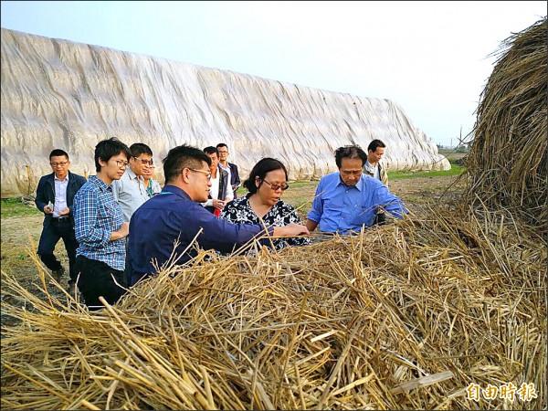 農委會主委曹啟鴻了解稻草回收堆置再利用。(記者蔡宗勳攝)