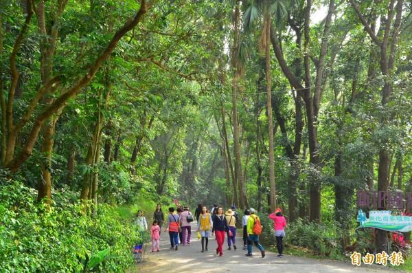 興大新化林場目前免費入園,吸引不少遊客造訪。(記者吳俊鋒攝)