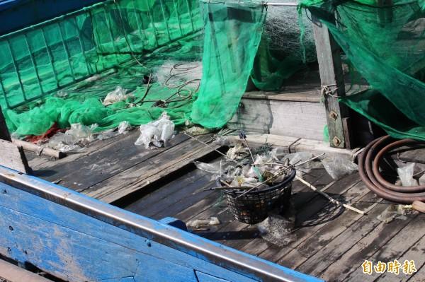 漁民捕魚卻撈到許多「垃圾」魚。(記者黃淑莉攝)