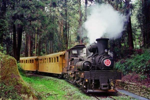 阿里山森林鐵路堪稱是台灣的國寶級資產。(嘉義林管處提供)
