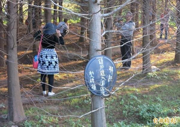 地主放上「請勿進入園區」告示牌,還是有遊客不甩,直接踩進拍照。(記者鄭淑婷攝)