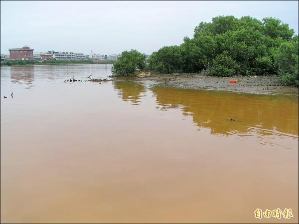 二仁溪過去也常遭偷排,河面呈紅褐色,現在這種情形已十分少見,水質也明顯改善。(記者蔡文居攝)