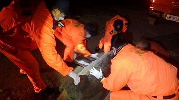 海巡署41大隊在彰濱工業區線西段北岸沙灘發現鯨豚屍體,經確認是「瓶鼻海豚」。(記者劉曉欣翻攝)