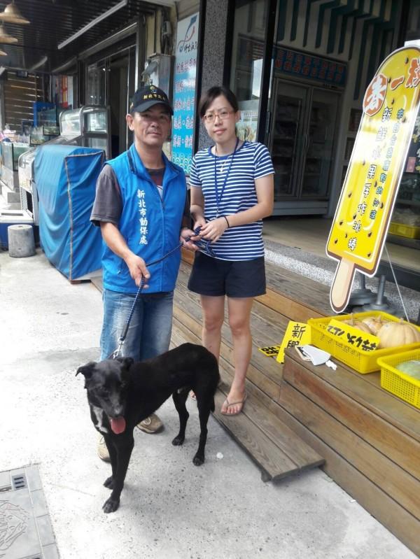 陳小姐的愛犬遺失,經新北市動保處協尋,小黑犬跋涉一百多公里,終於重回主人懷抱。(動保處提供)