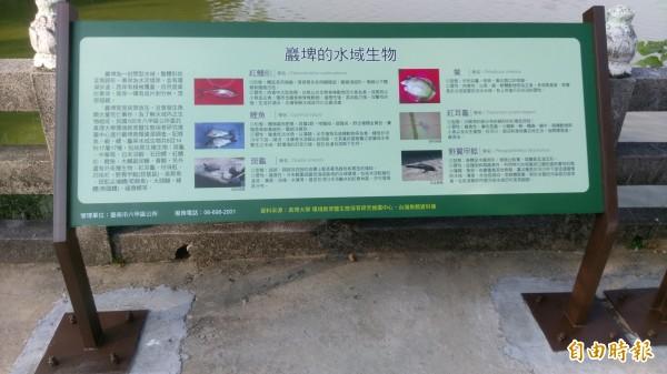解說牌認識巖埤的水生生物。(記者楊金城攝)