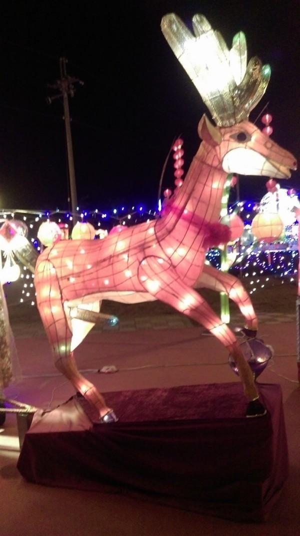 擁有「30公分鹿鞭」的雄路花燈。(擷取自爆料公社)