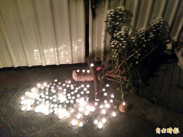 花蓮縣政府列管288百年老松遭人毒死,支解移除,居民今晚舉行追悼會並擺上蠟燭。(記者王錦義攝)