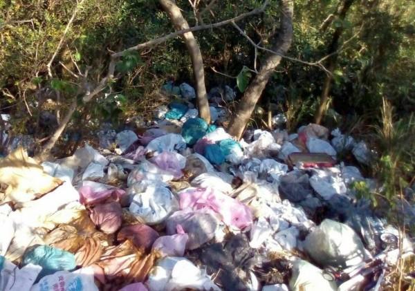 400多隻死雞16日被棄置在新竹縣湖口鄉郊區產業道路陡坡下,死雞檢體檢驗結果今天晚間出爐,為H5亞型家禽流行性感冒病毒陽性反應。 (新竹縣政府提供)