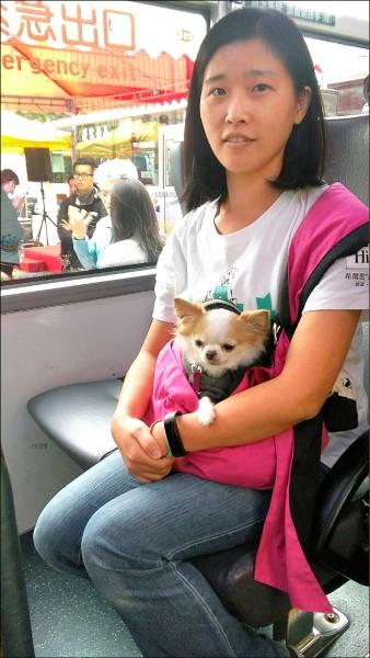 「友善狗狗公車」試辦,近兩個月已服務五十三隻狗狗。(資料照)