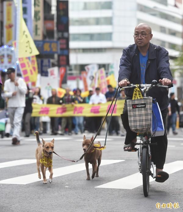 反核大遊行3月11日在台北舉行,許多民眾響應。(記者方賓照攝)