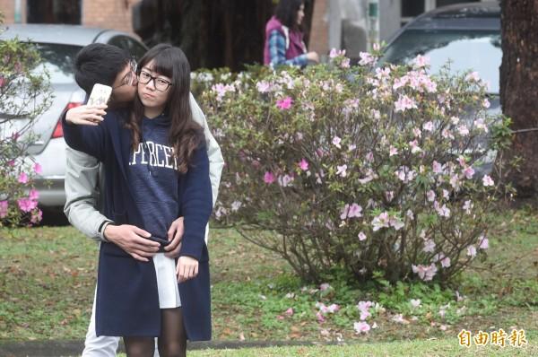 台大杜鵑花節開幕,儘管花開不如預期,但仍有不少民眾及學生前往賞花。(記者叢昌瑾攝)