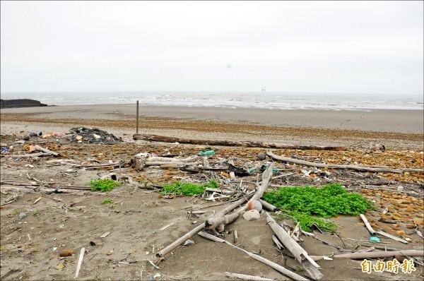 海灘上散布雜木、破漁網、酒瓶等垃圾,景觀雜亂無章。(記者彭健禮攝)