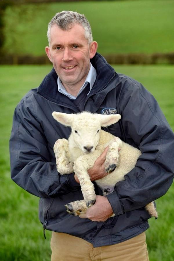 農場主人決定留下5隻腳小羊。(圖擷自Mirror)