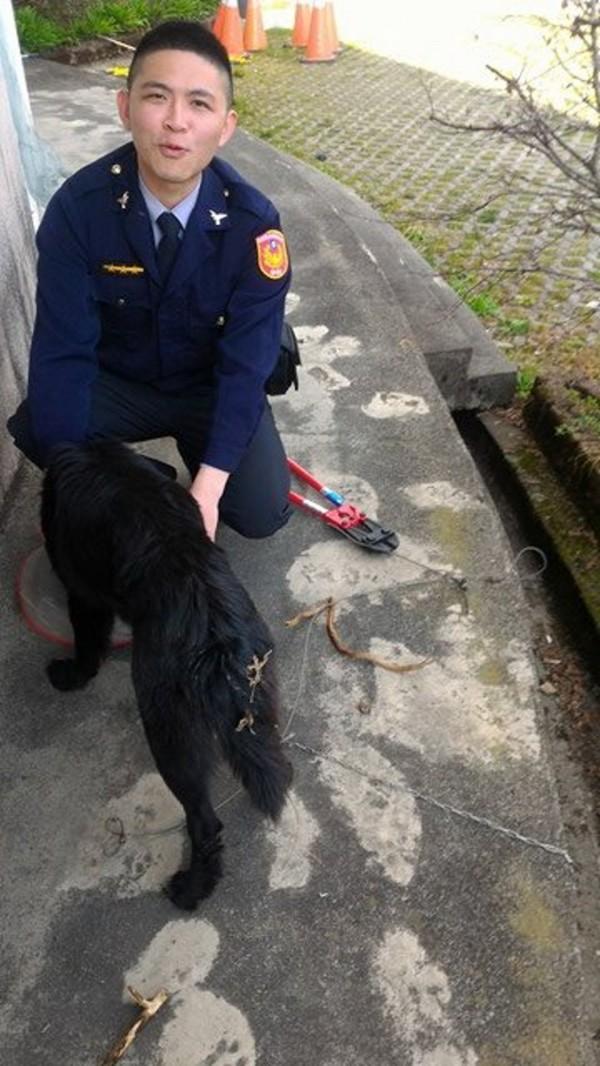 誤觸陷阱的小黑狗使盡全力掙脫後,跑到翠峰派出所向員警林愈勝求救。(圖由簡姓動保志工提供)