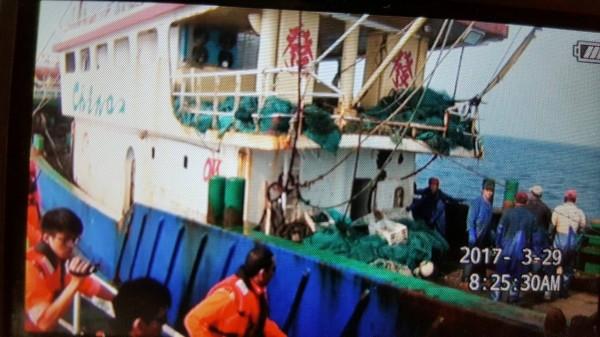 海巡人員登艇查獲1200公斤漁獲。(記者吳昇儒翻攝)