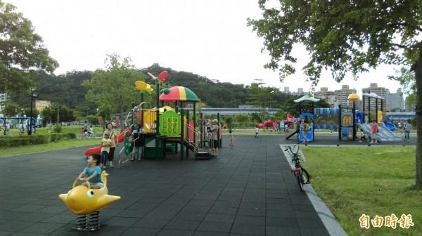 新北市公園以塑化組合遊具和搖搖馬居多,特公盟認為全市遊具單調低齡化。(記者何玉華攝)