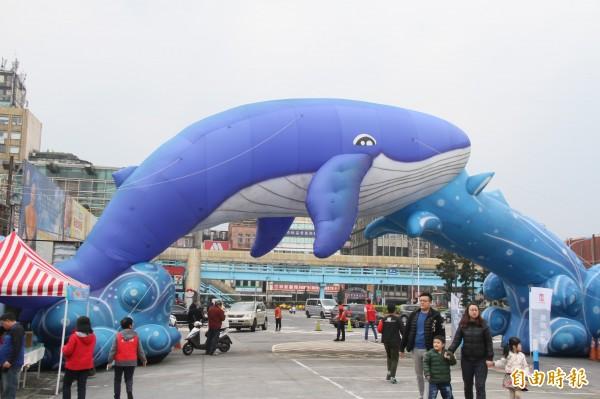 大藍鯨現身基隆市區。(記者林欣漢攝)