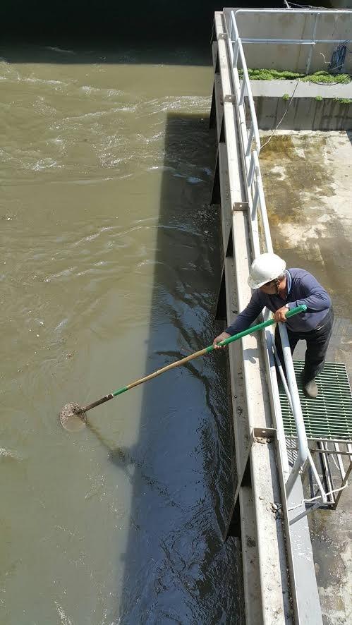 台北市衛工處認定,八里污水廠承包商惠民實業為便宜行事,將未處理污水流至海放抽水站前池,導致污水流入大海。(圖由惠民實業提供)