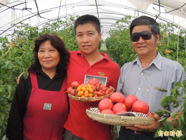 宜蘭青農吳柏瑞(中)堅持友善耕作,種出健康無毒番茄,讓務農半世紀的父親(右)也折服。左為吳母。(記者江志雄攝)