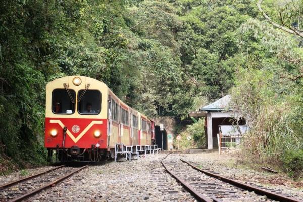阿里山森鐵5月再推郵輪式列車行程,帶旅客認識鄒族文化。(台鐵局提供)