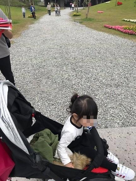 遊客上網PO文,批綠博園區的石頭路,要怎麼推兒童推車。(照片取自宜蘭知識+)