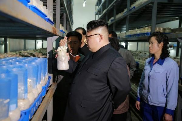 分析認為,美國轟炸敘利亞是在向北韓釋出警告訊息,但北韓不會改變其核武路線。(路透)