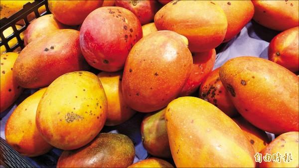 有媒體報導指食藥署放寬農藥「普拔克」在芒果等水果的殘留容許量,食藥署表示是依照國情而定、參數不同,設定不一樣的標準。 。(記者林惠琴攝)